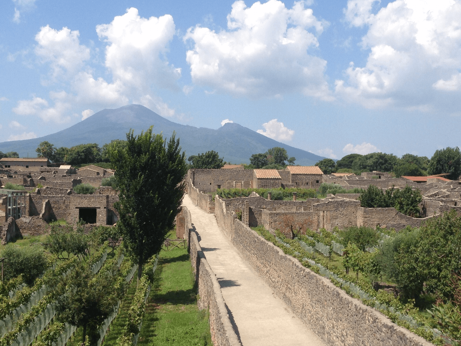 City of Pompeii with Mt. Vesuvius looming in the background.