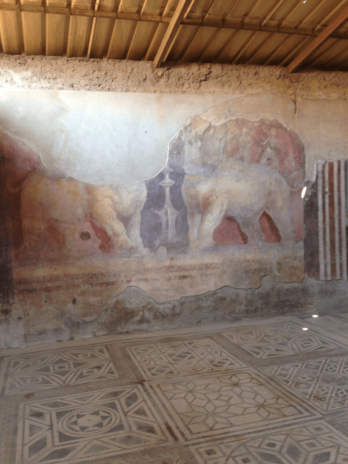 Mural on the wall of a building interior in Pompeii.